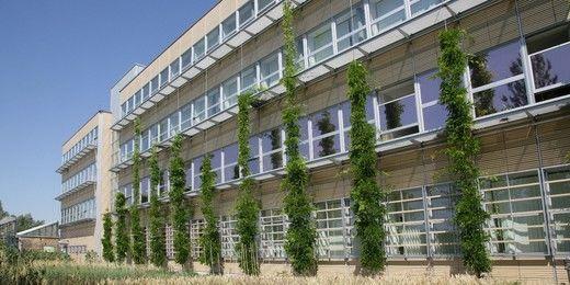 Hochschule Neubrandenburg - University of Applied Sciences