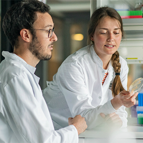 MSc in Biochemistry and Molecular Biology