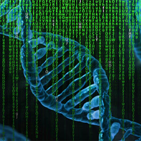 MSc in Computational Biomedicine