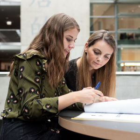 Bachelorstudium Wirtschaftswissenschaften - Management and Economics